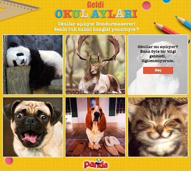Panda ruh halini seç.