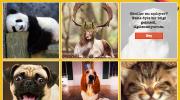 Panda'dan 'Okul Ayları' Kampanyası